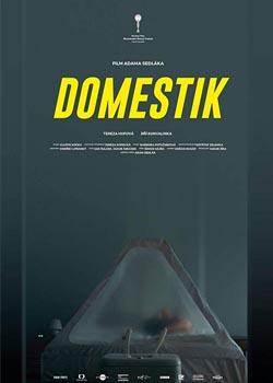 Domestique (2018)