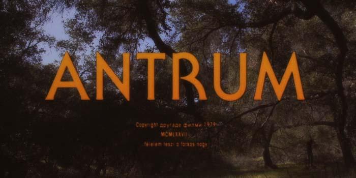 Antrum (David Amito & Michael Laicini, 2019)